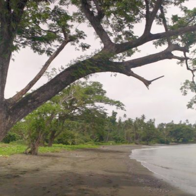 Fiji Footage_Graded_107052