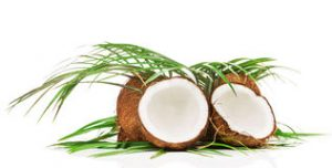 Virgin Coconut Oil Manufacturer Fiji